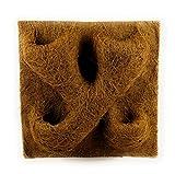 proflora Kokosfaser Rückwand Terrarium Kokosmodul 40 x 40 cm mit