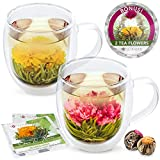 Teabloom Extra-Large Insulated Double Wall Glass Mugs (16oz / 500ml) & Blooming Tea Flowers (Set of 2 Mugs + 2 Flowering Teas) - Twin Harmony Flowering Tea Gift Set