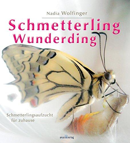 Schmetterling - Wunderding: Schmetterlingsaufzucht für zuhause