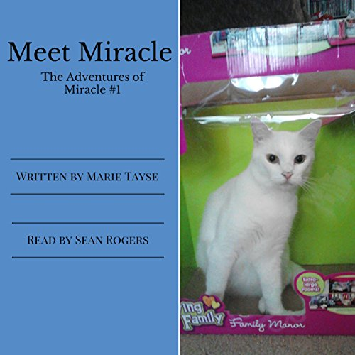 Meet Miracle audiobook cover art