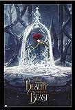 Disney - Die Schöne und das Biest - Rose - Film Poster
