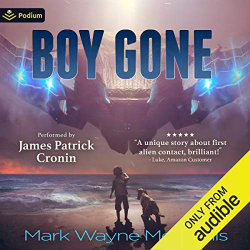 Boy Gone cover art