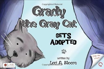 Grady the Gray Cat