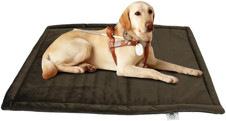 Aoligei Warm Dog mat NonSlip pet mat Pet Bed Folding Compression 74x53cm Perfect for Sunbathing mat, Nap&Sleeping Bed