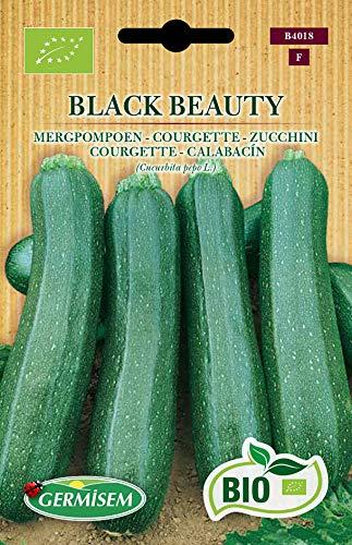 Germisem Orgánica Black Beauty Semillas de Calabacín 3 g