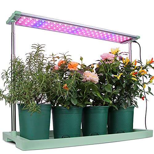 Moistenland 48W LED Grow Light Panel Only $53.99 (Retail $89.99)