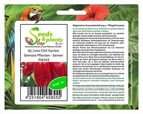 Stk - 5x Aji Limo Chili Garten Gemüse Pflanzen - Samen PW163 - Seeds Plants Shop Samenbank Pfullingen Patrik Ipsa
