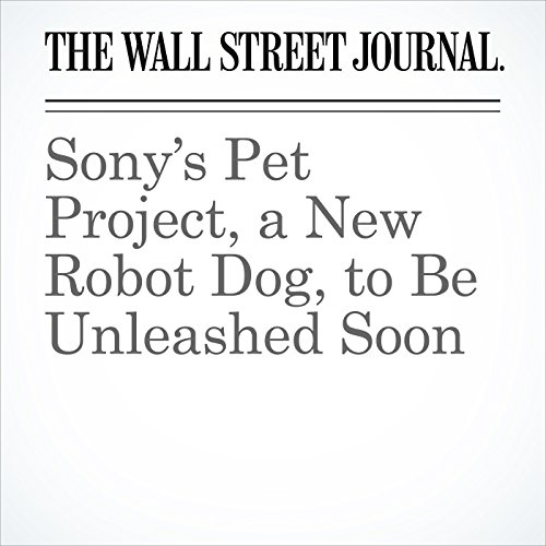 Sony's Pet Project, a New Robot Dog, to Be Unleashed Soon copertina