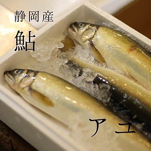 アユ 3匹 静岡 他 築地直送 鮎 鮮魚 養殖