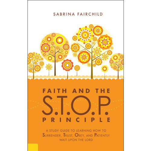 Faith and the S.T.O.P. Principle  audiobook cover art