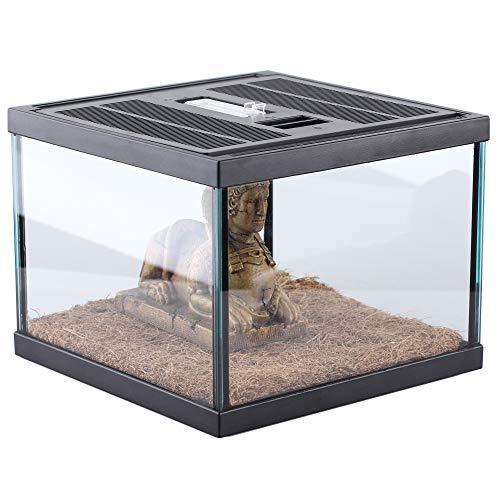 crapelles Reptile Spider Terrarium Glass Box Desert Style Kit for Small pet, Natural Plant Fiber mat, Decorative Statue