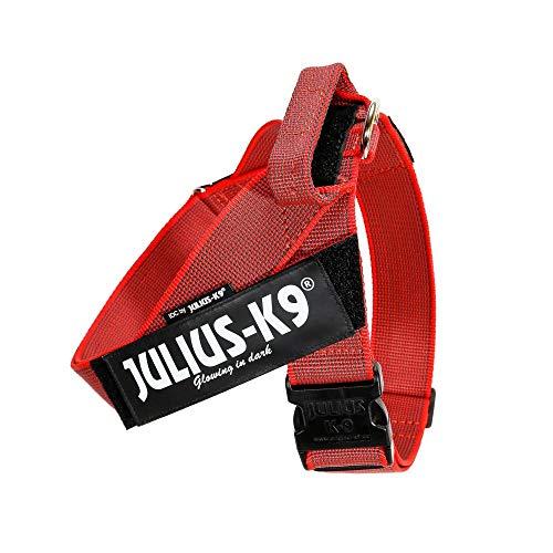 JULIUS-K9, 16503-IDC-R-15, Color&Gray IDC-Gurtbandgeschirr, Größe 3, rot-grau