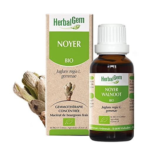 HerbalGem - Noyer Bio - Macérats-Mères de Gemmothérapie Concentrée - 30 ml