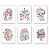 Watercolor Flowers Wall Art Print,Human Organs Art Printing,Set of 6 Art pósters Abstract Anatomy Viscera Pattern-Lung,Skull,Heart,Pelvis Art Canvas Painting for Living Room Decor 20x25cm