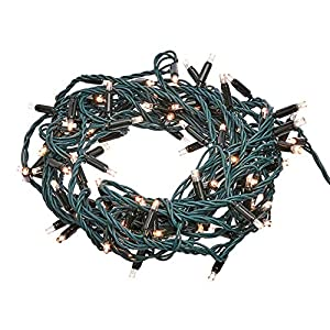 Includes one 33-foot green rope with 100 LED lights in a warm white color These commercial grade LED lights are suitable for use both inside the home and outside Great for using with a tree, lining a door frame or for decorating outside to create a s...