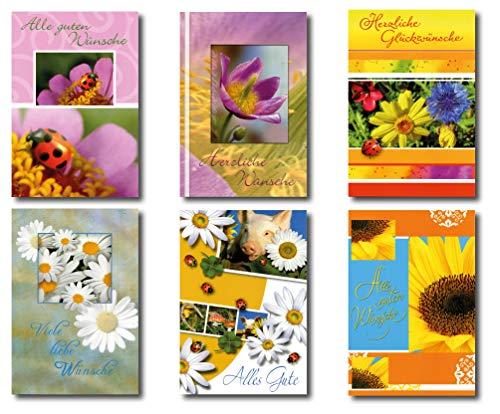 50 Grußkarten Allgemeine Glückwünsche mit Blumen 11,5 x 17 cm Glückwunschkarten Taunus Grußkarten Verlag 41-1990