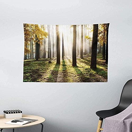 NC198 Tapiz de Bosque Paisaje Amanecer en el Bosque Hojas en Temporada de Bosque Paisaje Foto Colgante de Pared para Dormitorio 60 x 40 Pulgadas Amarillo Verde marrón