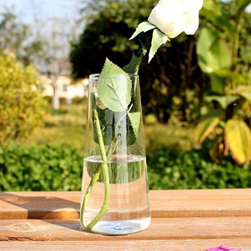 Yongse Cilinder Gevormde Hydroponische Planten Glazen Fles Vaas Thuis Tuin Bruiloft Party Decoratie