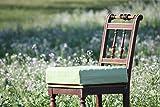 Biona Rollstuhl Sitzkissen Visco + Kaltschaum Schwerlast 14 cm (Inkontinenz beige, 50 x 47) -