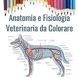 Anatomia e Fisiologia Veterinaria da Colorare: Regalo per gli studenti di veterinaria   Libro da colorare di Anatomia Animale   Cani, gatti, cavalli, uccelli e altro
