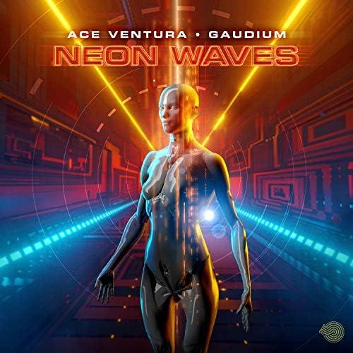 Ace Ventura & Gaudium