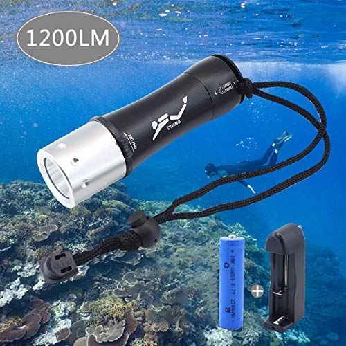 Diving Flashlight Bright LED Submarine Safety Light for Underwater Activities and Outdoor Activities TURN RAISE Scuba Diving Light 1200 Lumen XM-L2 100M Waterproof Underwater Torch