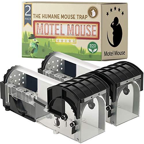 Piège À Souris Vivante Sans Cruauté - Ultrasensible - Facile à Utiliser - Sûr pour Les Animaux domestiques et Les Enfants - Réutilisable (2Pack-Onyx Transparent)