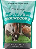 Barenbrug Free Range GroundCover Forage Seed Mixture Ideal for Chickens, Game Birds, Goats, and...