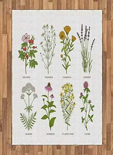 ABAKUHAUS Kraut Teppich, Naturkosmetik Blumen, Deko-Teppich Digitaldruck, Färben mit langfristigen Halt, 120 x 180 cm, Mehrfarbig