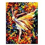 Diamond Painting Ballet Dance Diy 5D Kit de Pintura de Diamante Bordado Pintura de Cristales de Estrás Casa Pared Y decoración de Entrada 11x15inch(30x40cm)