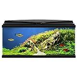 CIANO Aquarium 80 Led : Noir, 74l, 79x30x35cm