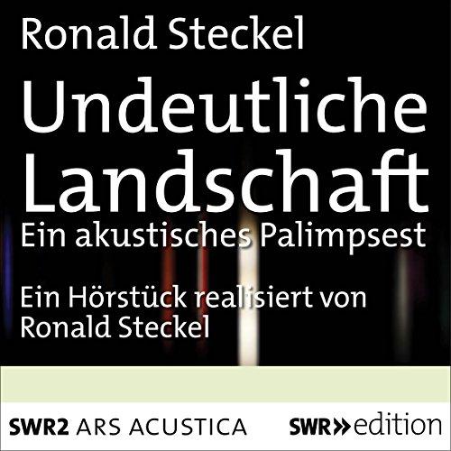 Undeutliche Landschaft audiobook cover art
