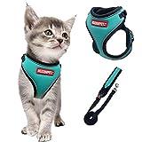 Arnés y correa de gato de MUDINPET, arnés de malla para caminar, ajustable y reflectante, cómodo y suave arnés de pecho de gato con correa de gato de 1,4 m