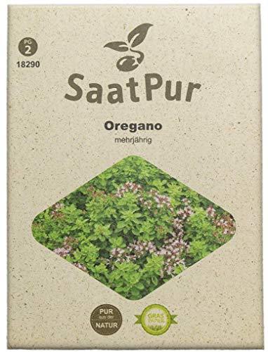 SaatPur Oregano Samen, Saatgut für ca. 150 Pflanzen