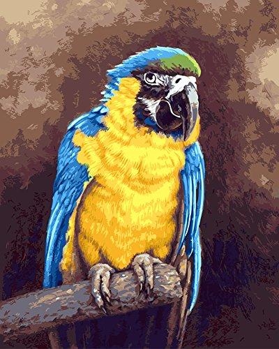 DIY Vorgedruckt Leinwand-Ölgemälde Geschenk für Erwachsene Kinder Malen Nach Zahlen Kits Home Haus Dekor - Papagei 40*50 cm