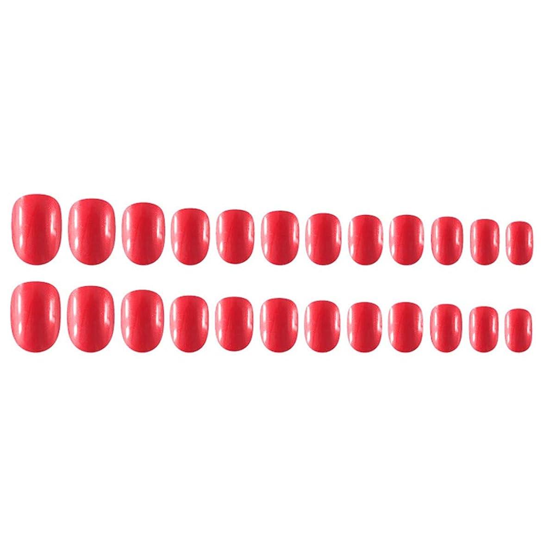 厚さモニター付属品Decdeal Decdeal ネイルチップ 24ピース 12異なるサイズ diy サロン ネイルアートツール 偽