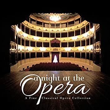 A Night at the Opera: A Fine Classical Opera Collection