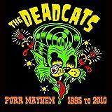 Deadcat Boogie