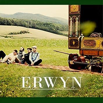 Erwyn