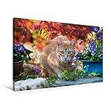 Calvendo Premium Textil-Leinwand 90 cm x 60 cm quer, Rot-getigerte Katze in Einer bunten Gartenidylle | Wandbild, Bild auf Keilrahmen, Fertigbild auf echter und beobachtet aufmerksam Tiere Tiere