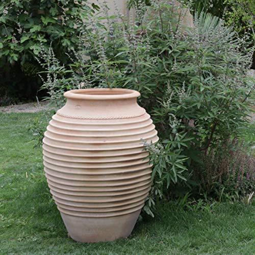 Kreta-Keramik | große handgefertigte Amphore aus echter Terrakotta | 100 cm | frostfest und witterungsbeständig | bauchiges XXL- Pflanzgefäß für den Garten Außenbereich Ficus