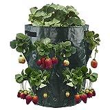 JYCRA Bolsa de cultivo de fresa, ecológica, con 8 bolsillos de crecimiento laterales, con asas para fresas, hierbas y flores, 41 l , PE, Verde, 2Pack