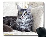 Colores Gaming Alfombrilla de ratón Diseño Personalizado Mat, Maine Coon Cat Silla mullida Mentira 1...
