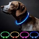 LED-Hundehalsband, Mini-USB-wiederaufladbar, TPU, leuchtend, wasserfest, für kleine, mittelgroße und große Hunde (blau)
