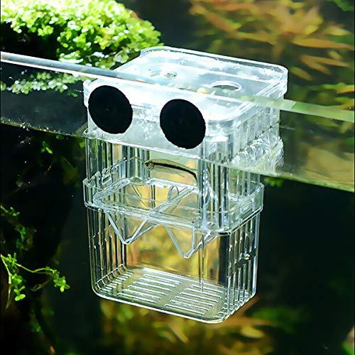 SENZEAL Kunststoff Fisch Isolation Box multifunktionale Zuchttanks Brutkasten Inkubator Box mit 3 Stücke Pasteur Pipette (105x75x135mm)