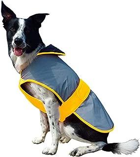 Weatherbeeta Equisafety Mercury Dog Coat