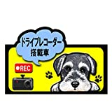 ドライブレコーダー 搭載車 録画中 犬 ステッカー シュナウザー14 ミニチュアシュナウザー シール 車 車用 雑貨 グッズ
