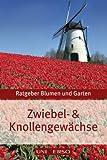 Ratgeber Garten > Zwiebel und Knollengewächse