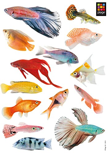 Plage Peces Tropicales Adhesivos Decorativos, Multicolor, 29,7x21cm