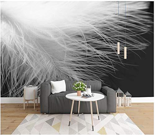 Papel Pintado Pared Dormitorio Geometría De Primer Plano De Plumas En Blanco Y Negro De Fantasía Papel Pintado Pared 3D Papel Pared Mural Pared Fotomurales Decorativos Pared Murales 300x210cm